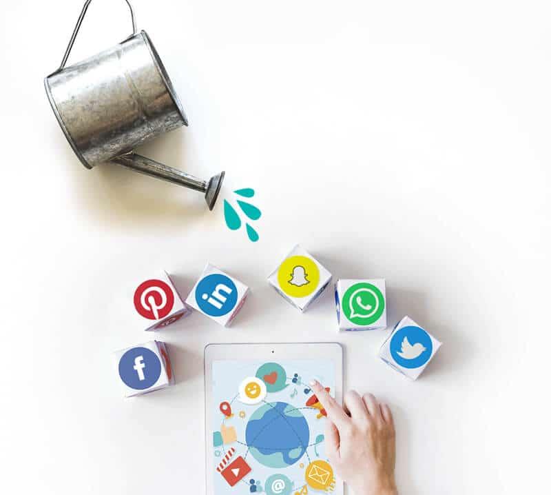 Social Annaffiati, ti aiuto a prenderti cura dei tuoi social e tenerli aggiornati